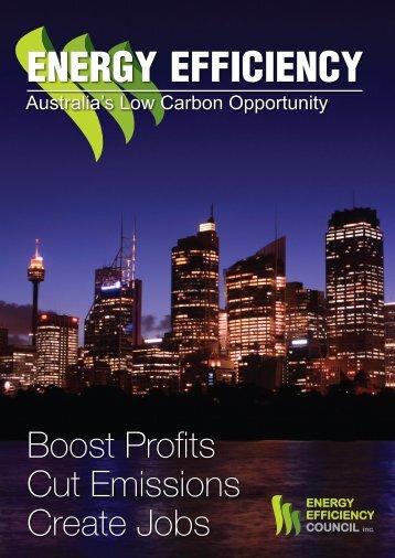 Energy Efficiency Project Proposal Template Low Carbon Australia