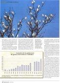 en S'Albutera de Mallorca - Page 4