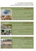 PLANTATIONS - Arbre & Paysage - Page 5