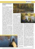 Im Internet unter www.der-angelfi scher.de - VDSF LV Berlin ... - Seite 7