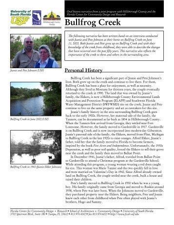 Bullfrog Creek - Hillsborough County & City of Tampa Water Atlas