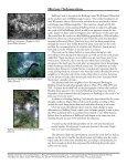 Bullfrog Creek - Hillsborough County & City of Tampa Water Atlas - Page 3