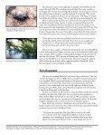 Bullfrog Creek - Hillsborough County & City of Tampa Water Atlas - Page 5