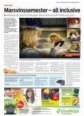 Steget - Lokaltidningen Mitt i - Page 7