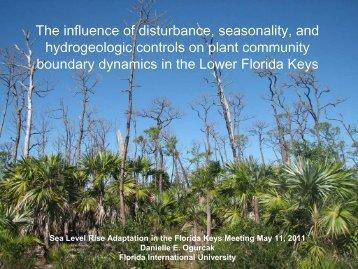 Plant community boundary dynamics
