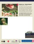 Art of the American Soldier Family Guide - National Constitution ... - Page 4