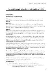 Kampanjeforslag til Spires Stormøte 21. og 22 ... - Utviklingsfondet