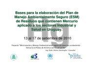 (Microsoft PowerPoint - Bases Plan de Acci\363n.ppt) - Centro ...