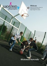 Wildcats Multi-Use Games Areas & Goals