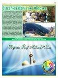 Brazil sve bliže! - Superinfo - Page 7