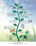 The Green that Cleans - Buckeye International, Inc. - Page 4