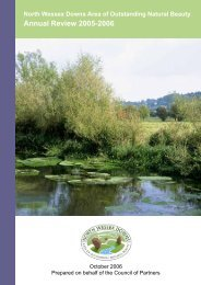 Annual Review 2005-2006 (388 Kb) - North Wessex Downs Area of ...