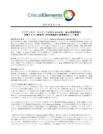 PDFバージョンをダウンロードする - Critical Elements Corporation