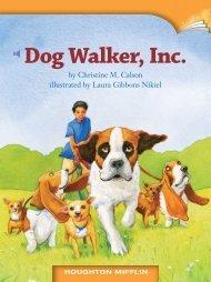 Lesson 16:Dog Walker Inc