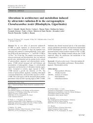 Alterations in architecture and metabolism induced by ultraviolet ...