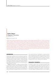 Buitre Negro Aegypius monachus - SEO/BirdLife