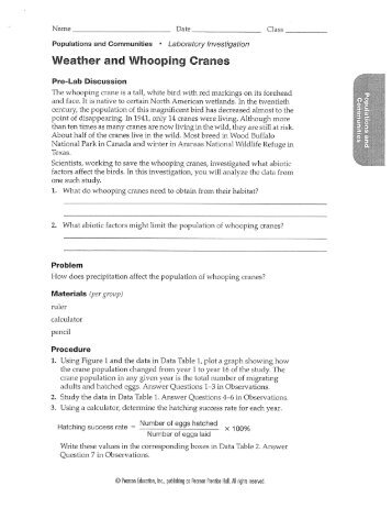 All Worksheets » Glencoe Mcgraw Hill Physical Science Worksheets ...