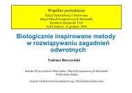 T. Burczyński - Instytut Metod Komputerowych w Inżynierii Lądowej ...