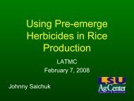 Using Pre-emerge Herbicides in Rice Production