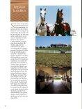 Le pur sang arabe - Magazine Sports et Loisirs - Page 4