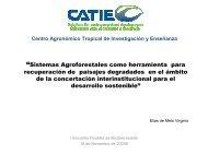"""Sistemas Agroforestales como herramienta para ... - SIGAM"