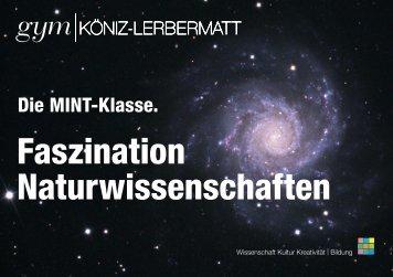 Info-Broschüre MINT-Klasse - Gymnasium Köniz-Lerbermatt