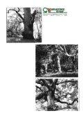 Javno poduzeće za gospodarenje šumama i šumskim - Hrvatske šume - Page 2