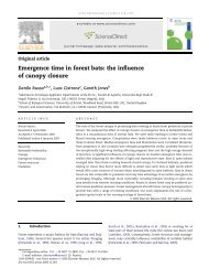 Emergence time in forest bats: the influence of canopy closure