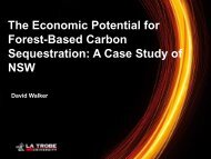 the economic potential for forest-based carbon sequestration