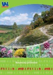 Botanický průvodce - Statutární město Ústí nad Labem