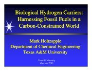 Biological Hydrogen Carriers: Harnessing Fossil Fuels in a Carbon ...