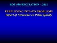 BOT 550 RECITATION – 2012 PERPLEXING POTATO PROBLEMS ...