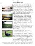Lake Weeks - Hillsborough County & City of Tampa Water Atlas - Page 2
