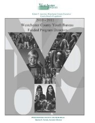 WESTCHESTER COUNTY YOUTH BUREAU MISSION STATEMENT