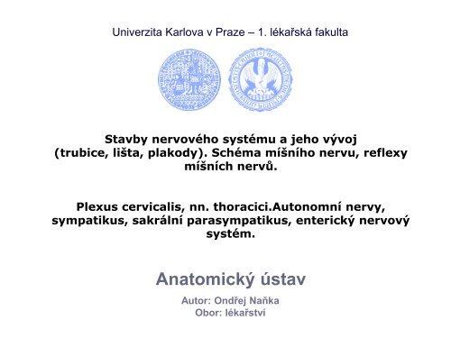Vývoj a stavba CNS - Anatomický ústav 1.LF UK - Univerzita Karlova