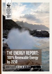 THE ENERGY REPORT: - WWF
