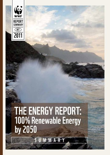 THE ENERGY REPORT: - WWF