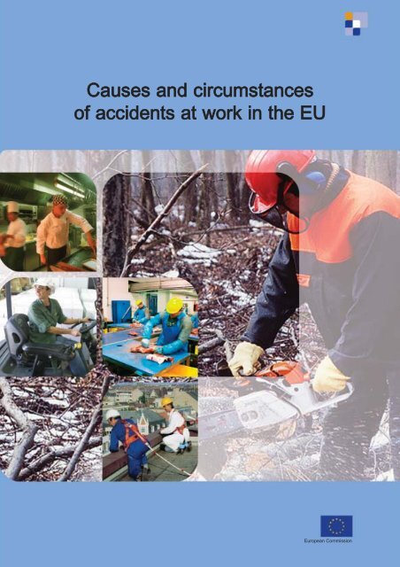 Causes and circumstances of accidents at work in the EU