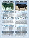 willabar long yearling bulls - Page 4