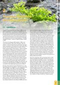 Towards an Ecological Network for the Carpathians II - Page 5