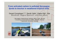 From activated carbon in polluted Norwegian fjords to biochar ... - NGI