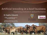Sophia Edwards University QLD presentation - Regional ...