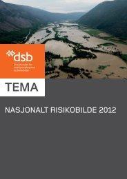 NasjoNalt risikobilde 2012 - NHH