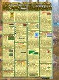 Das Abdichtungs-Konzept - Naturagart - Seite 6