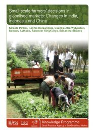 View - IIED pubs - International Institute for Environment and ...
