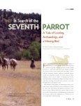seventh parrot - El Palacio Magazine - Page 2