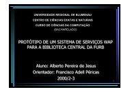 Aluno: Alberto Pereira de Jesus Orientador: Francisco Adell ... - Furb