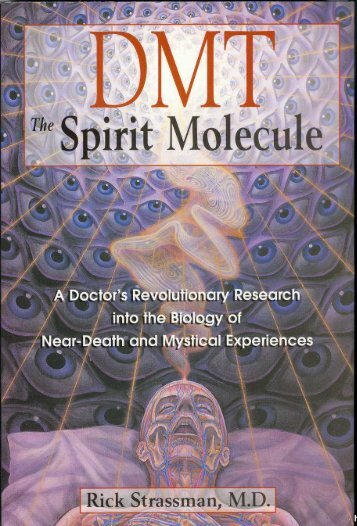 DMT: The Spirit Molecule PDF