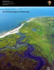 The Evolving Legacy of Jamaica Bay - Center for International Earth ...