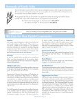 Sunday, April 21, 2013 - St. Mary's Roman Catholic Church - Page 4